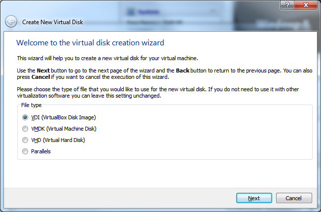 Create New Virtual Machine - Step 4.1 (Virtual Hard Disk - File Type)