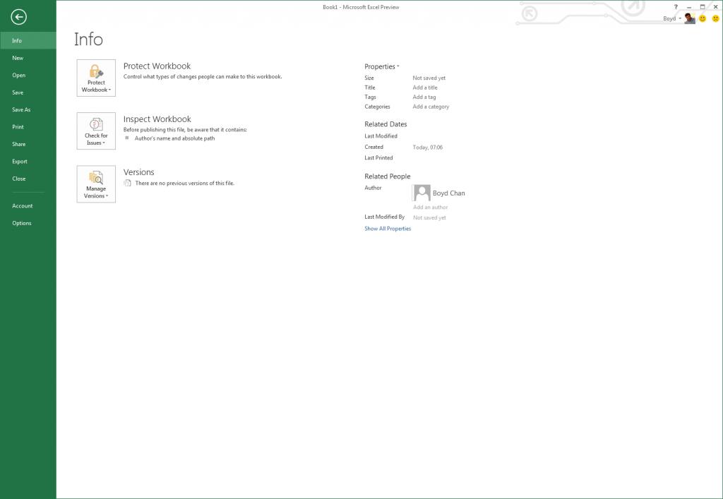Excel 2013 - Info Submenu